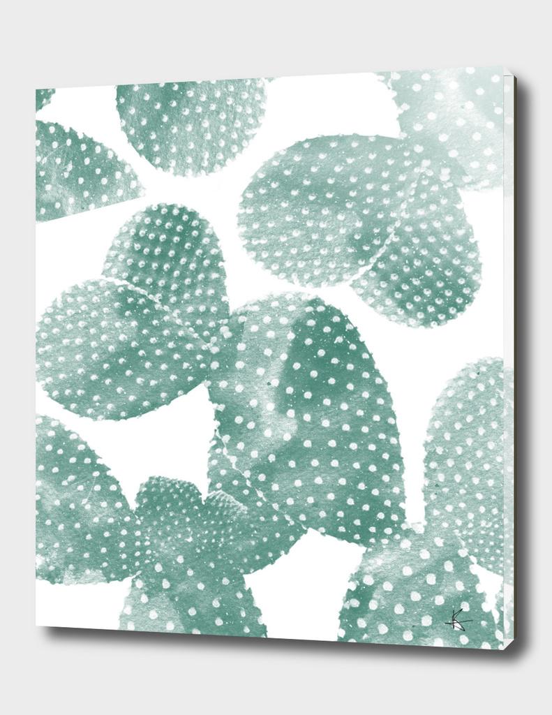 cactus dots