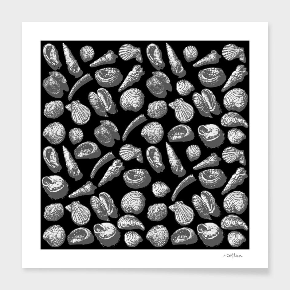 sea greyshells