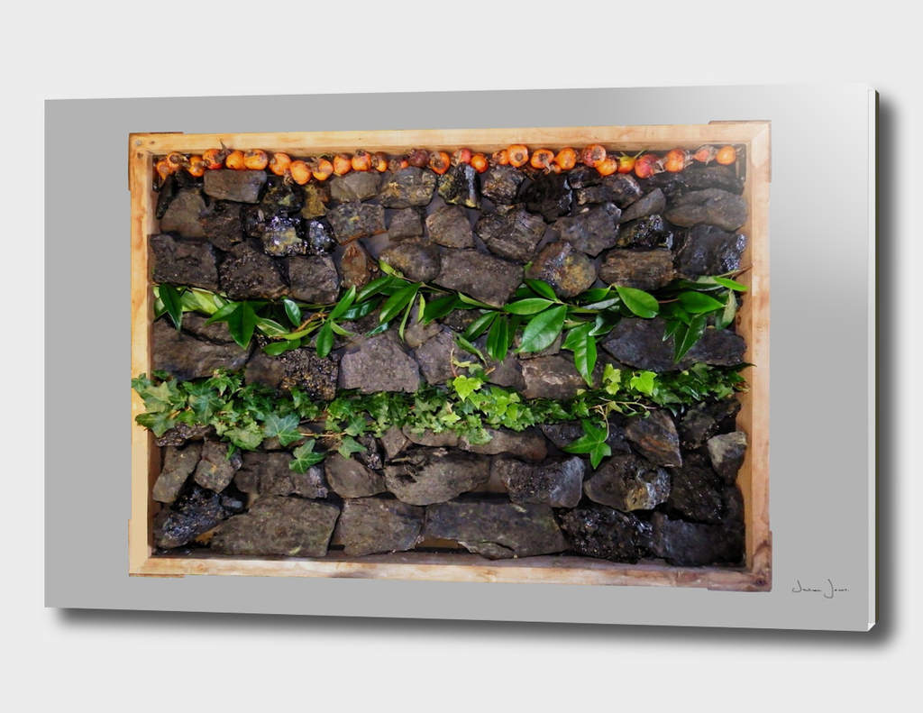 Coal & Leaves 01