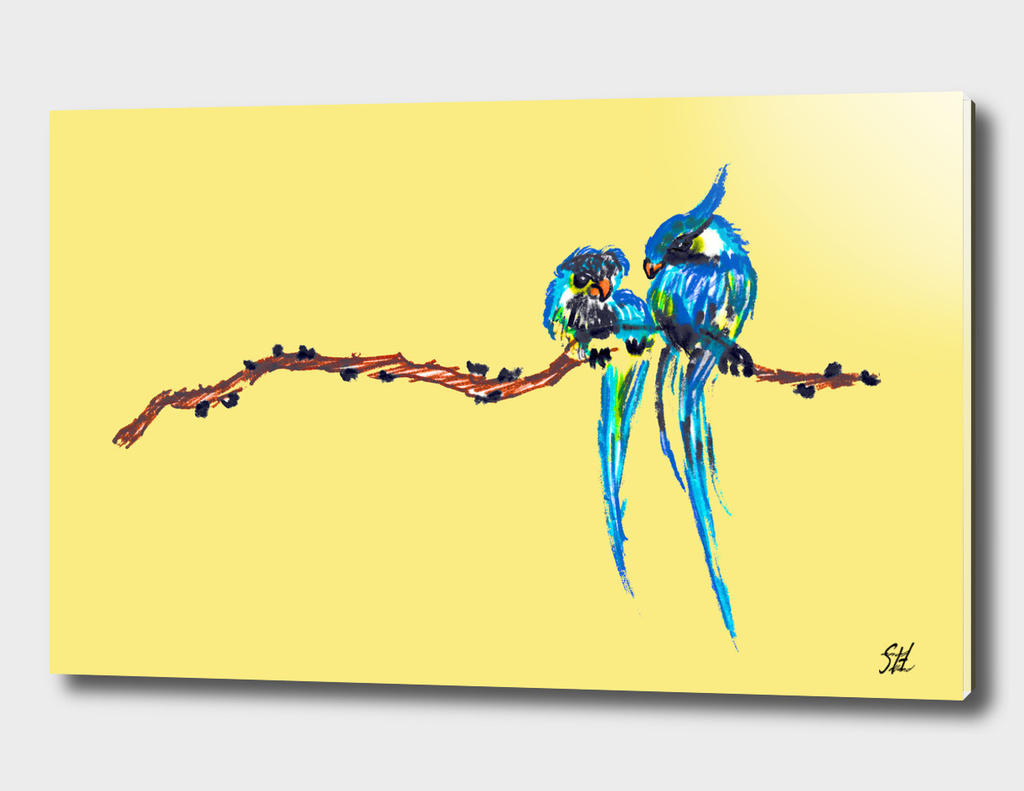 Colorful Bird Couple On A Branch, Yellow Back