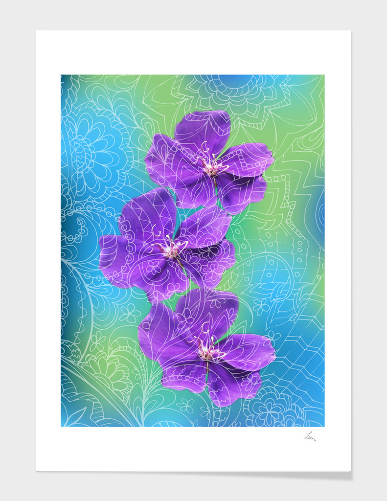 three violet zen flowers