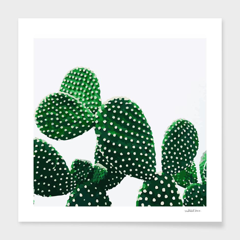 Cacti Plant (original)