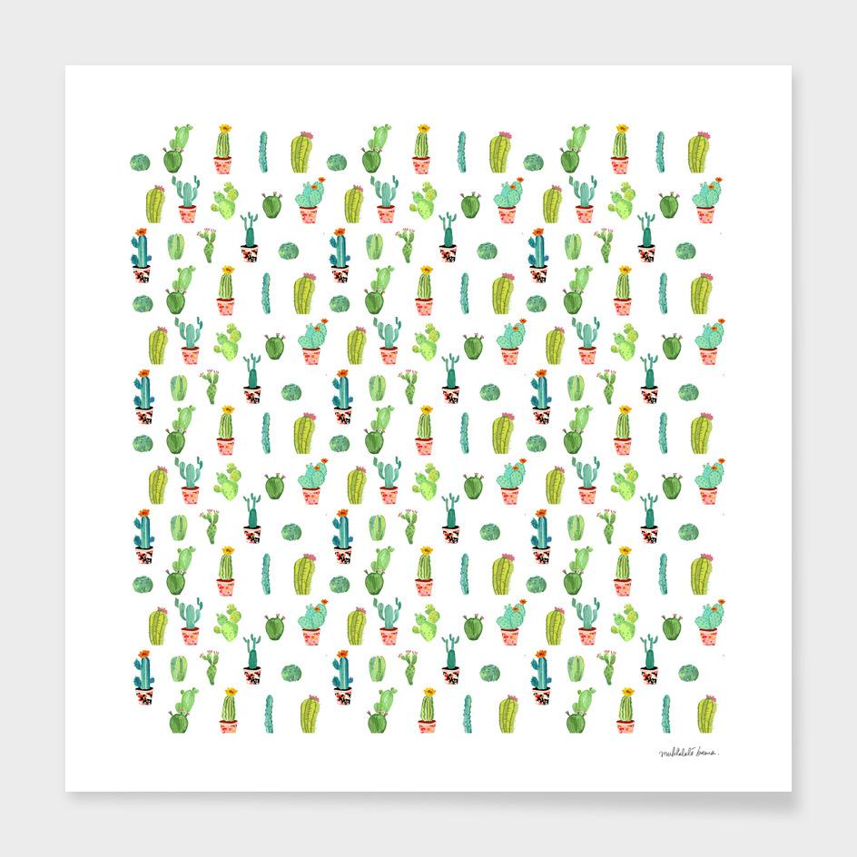 Cacti Land ( Pattern )