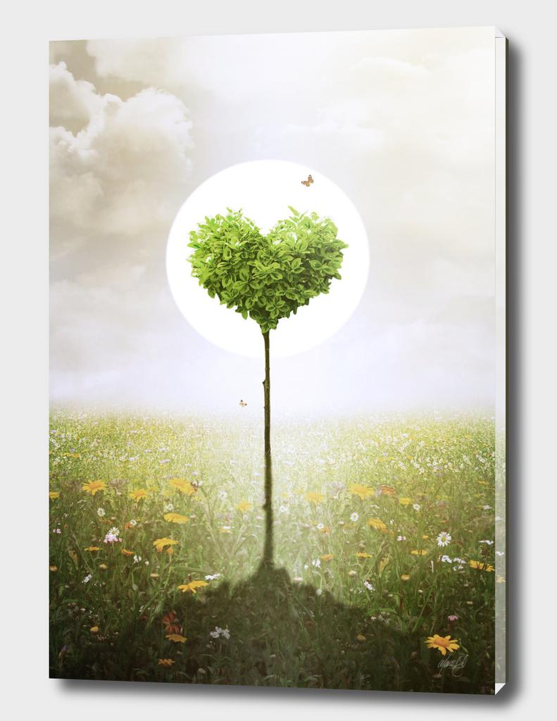 A Heart Symphony - Spring
