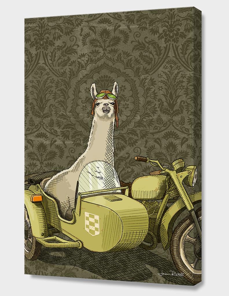 Sidecar Llama