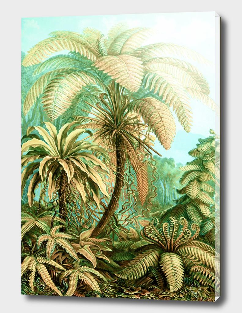 Vintage Tropical