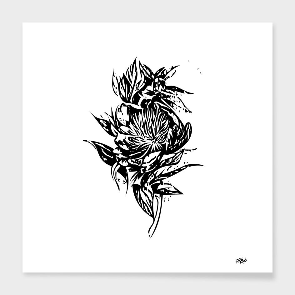 Flower Paeonia 1
