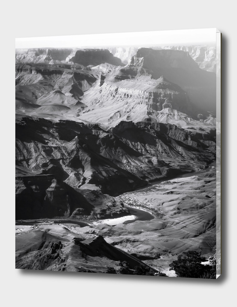 Desert at Grand Canyon national park, USA in black and white