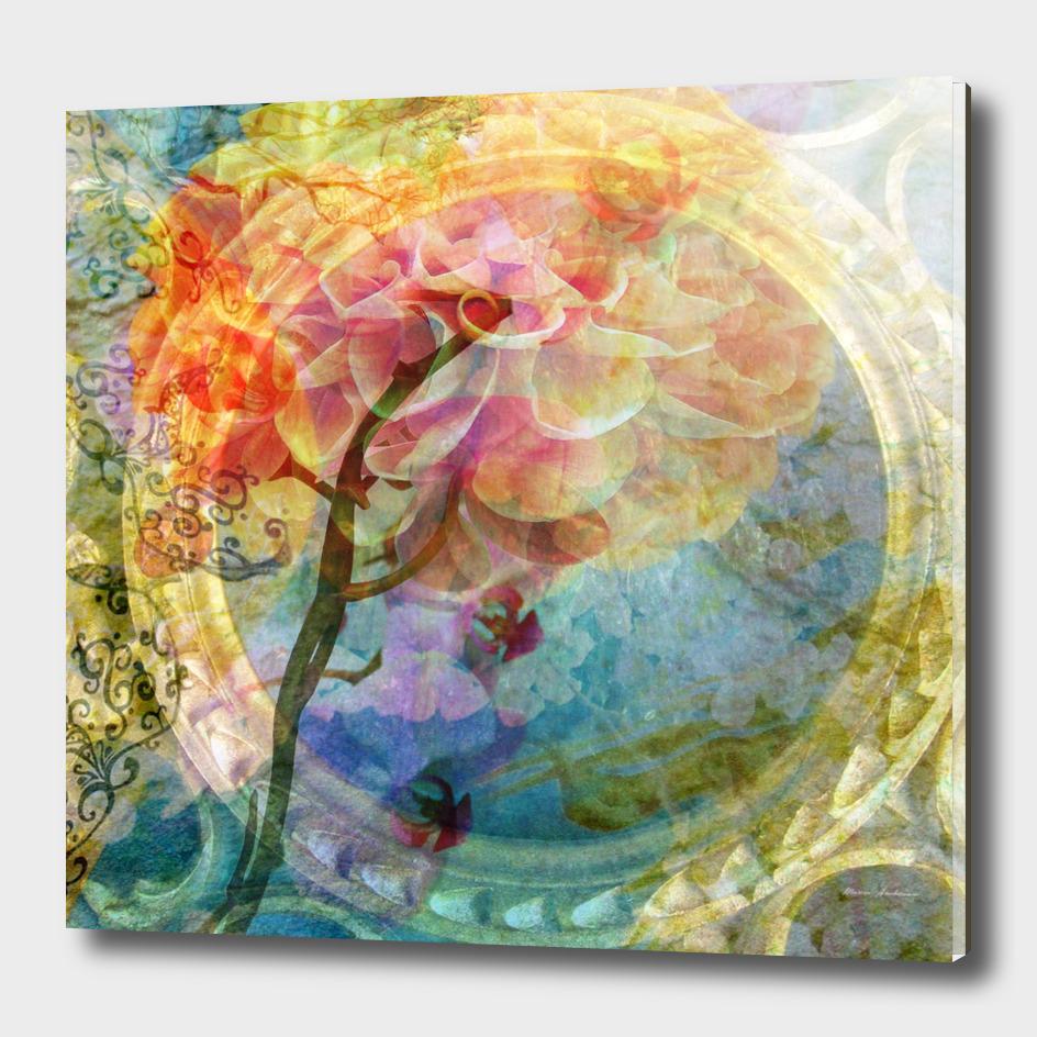 Dahlia Orchid Multicolor