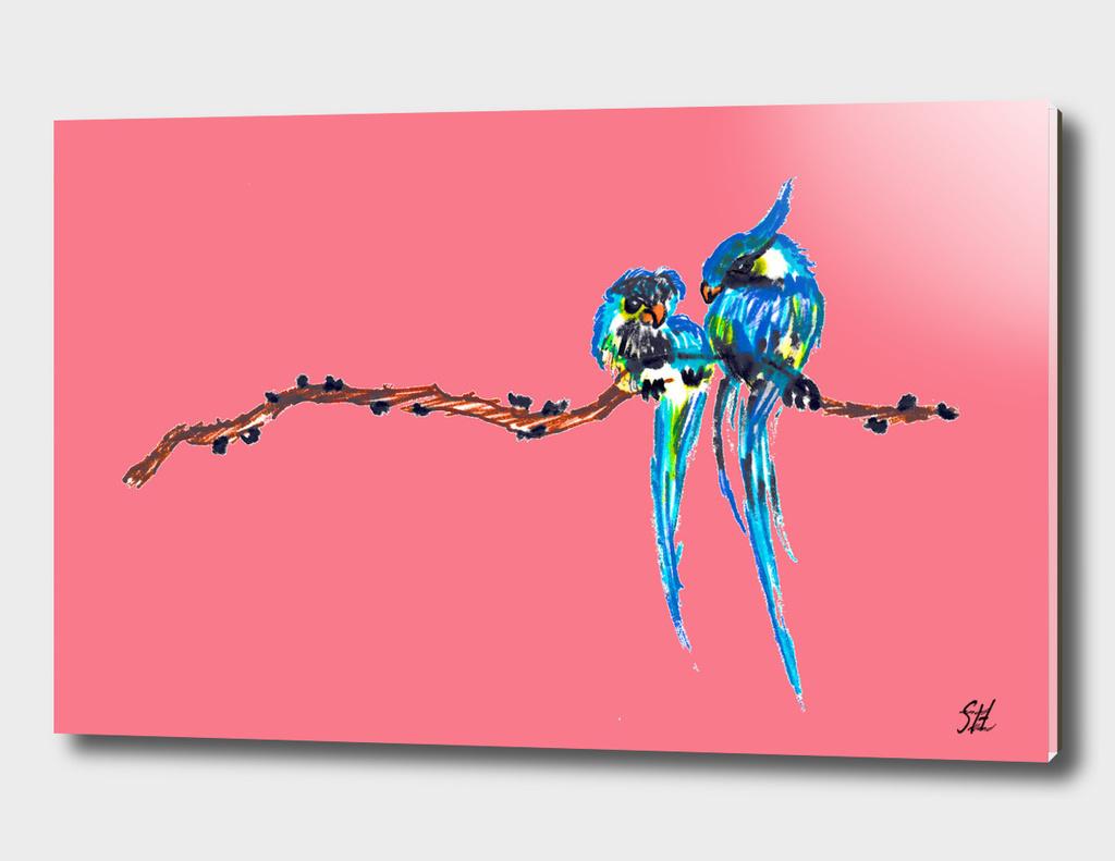 Birds In Love ~ Coral Back