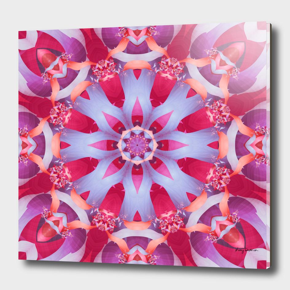 Bright Petals Mandala