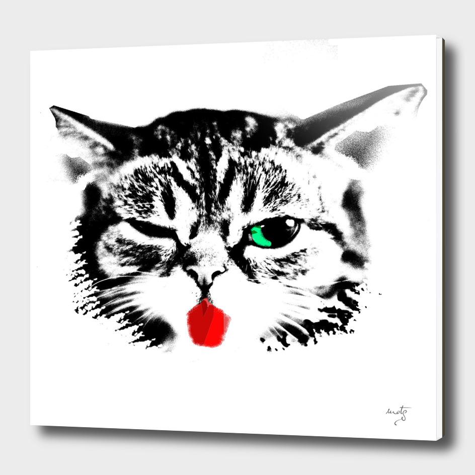 Winky Cat