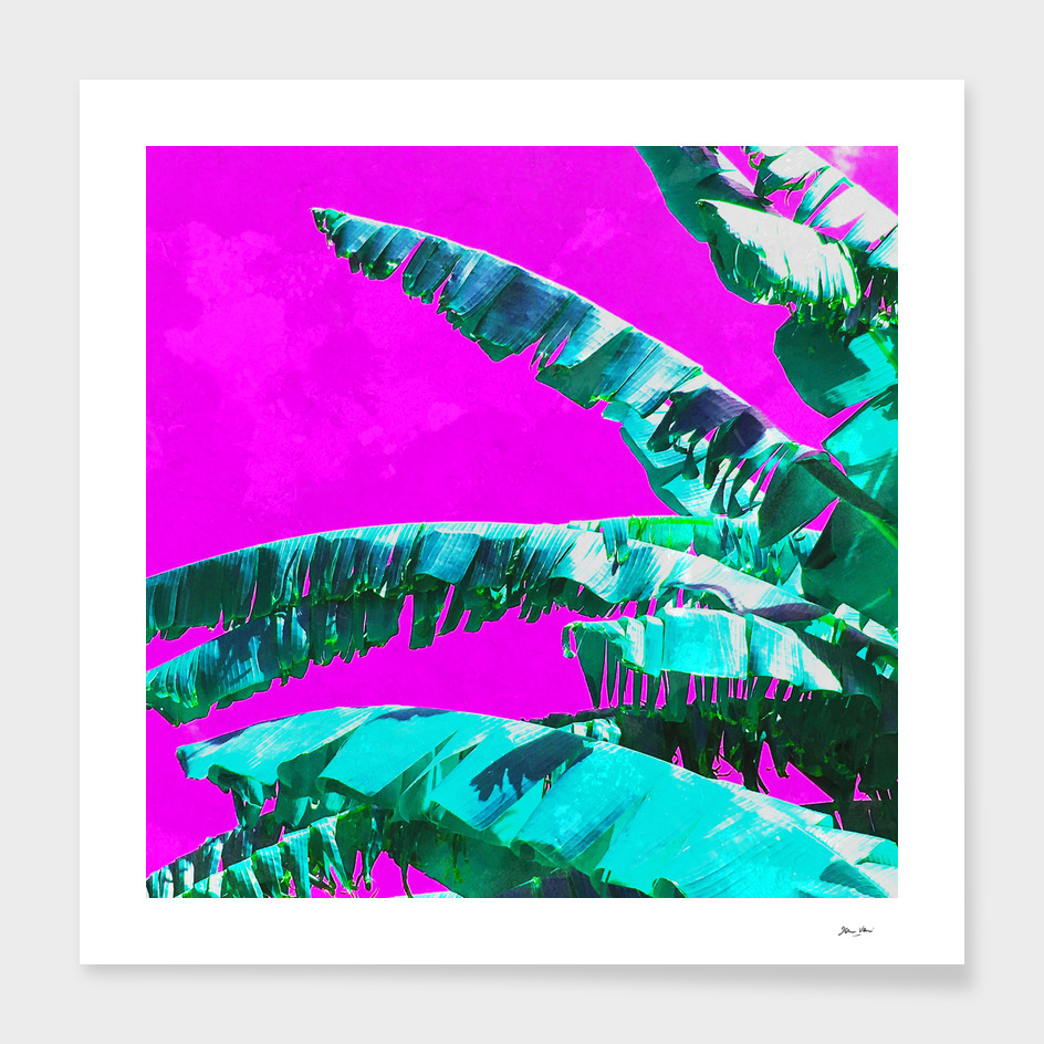 Banana Jungle - Green & Magenta