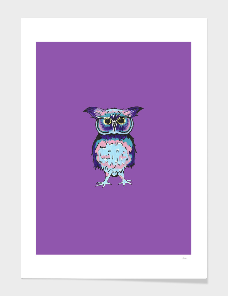 Small Owl Purple