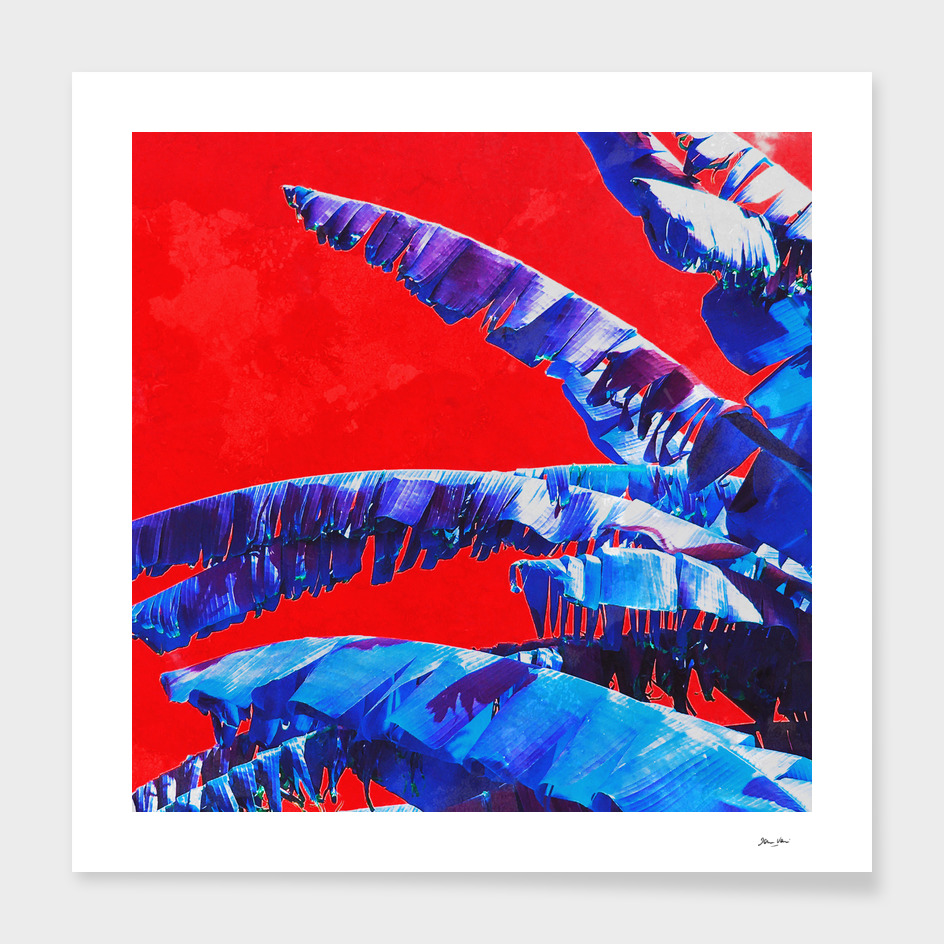 Banana Jungle - Blue & Red