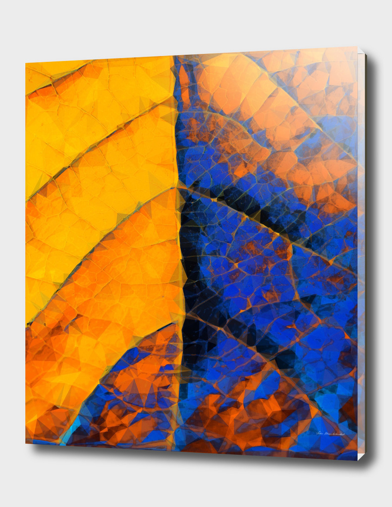 closeup leaf texture geometric abstract in blue yellow