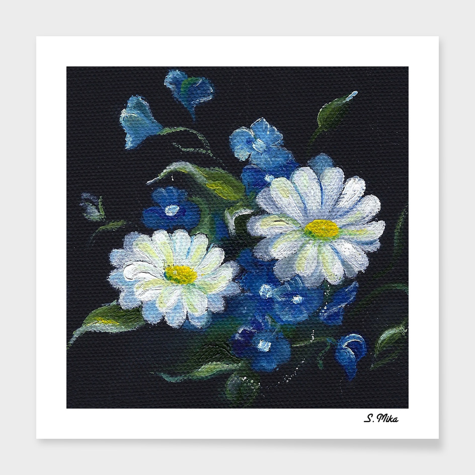 Daisy Flowers - White Flowers