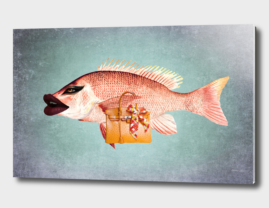 FISH CHIQUE