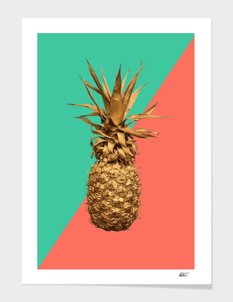Coral And Turquoise Pineapple