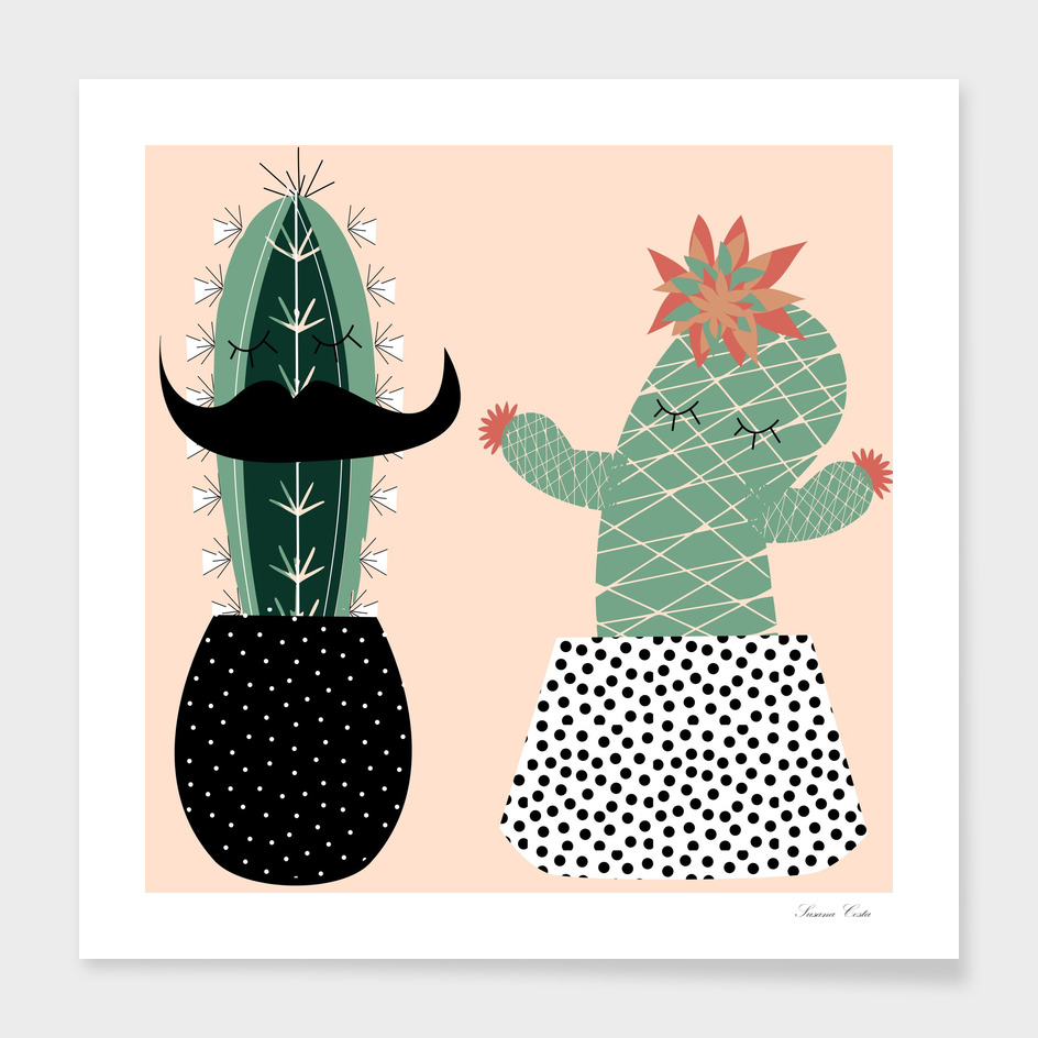 Mrs and Mr succulent