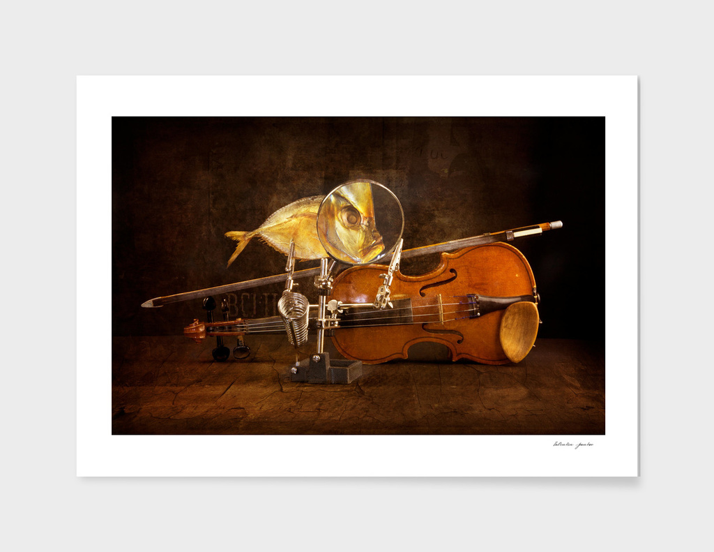 Fish and violin
