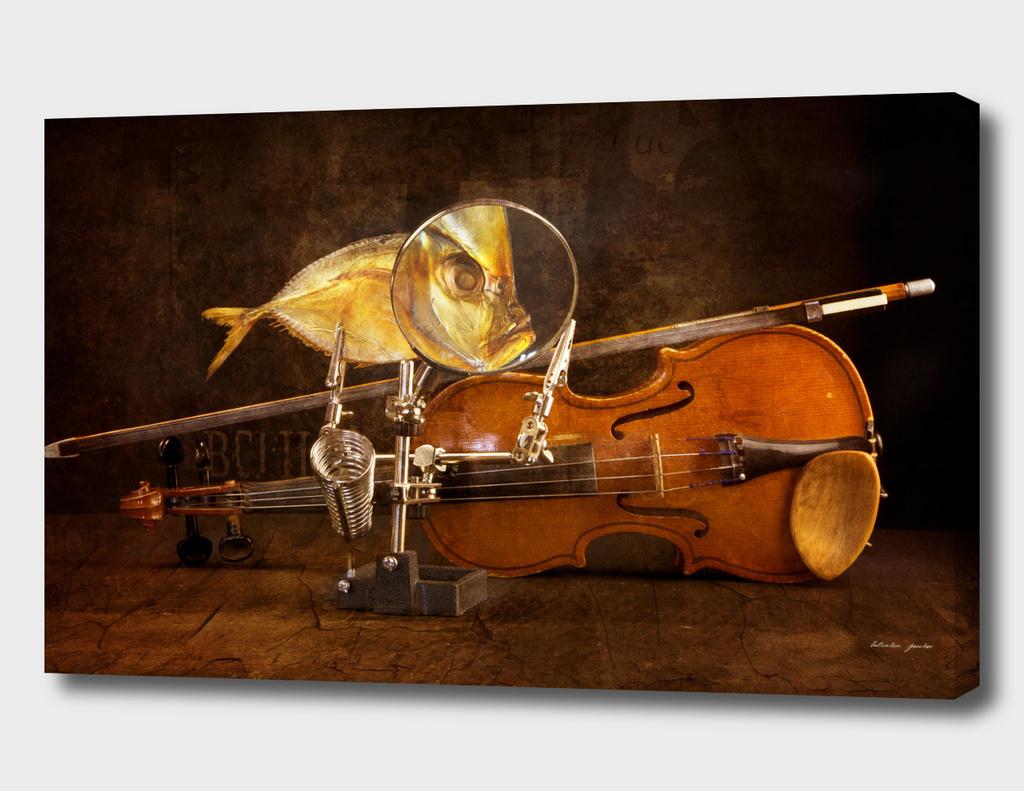 Fish and violin
