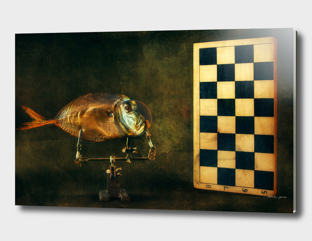 Fish and chess