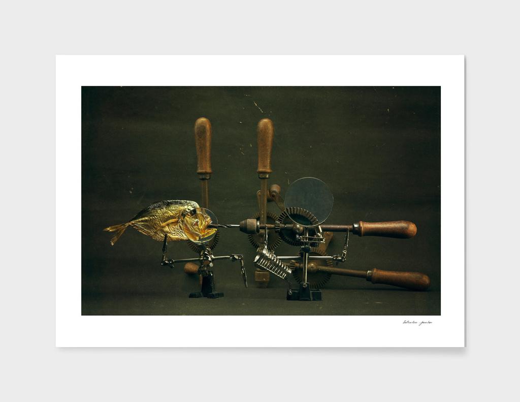 Fish and Drills