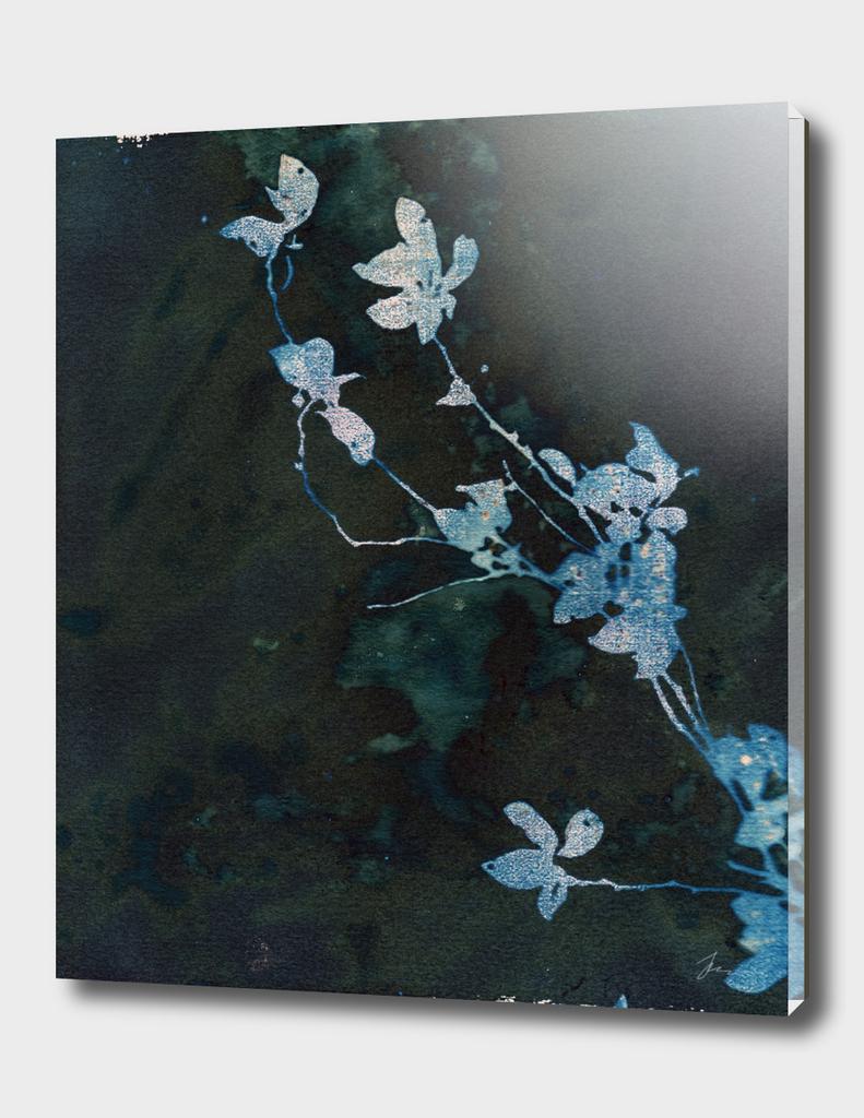 Evening Flowers