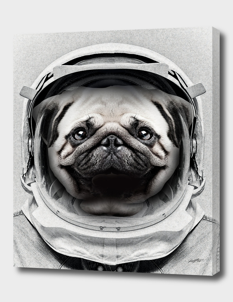 Puggly Pawstrong Astro Dog