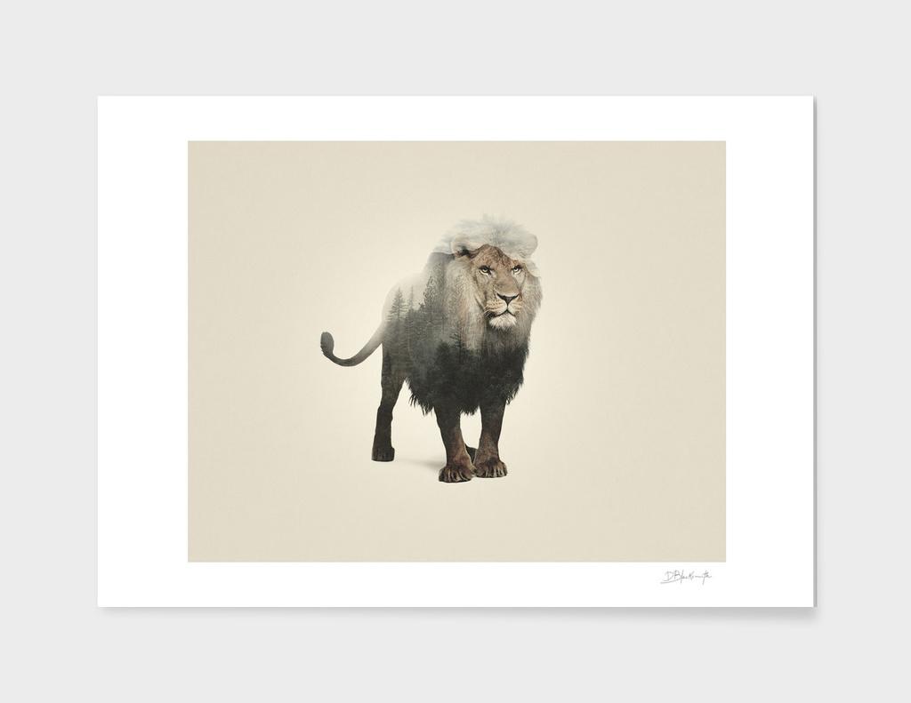 Lion | Double exposure