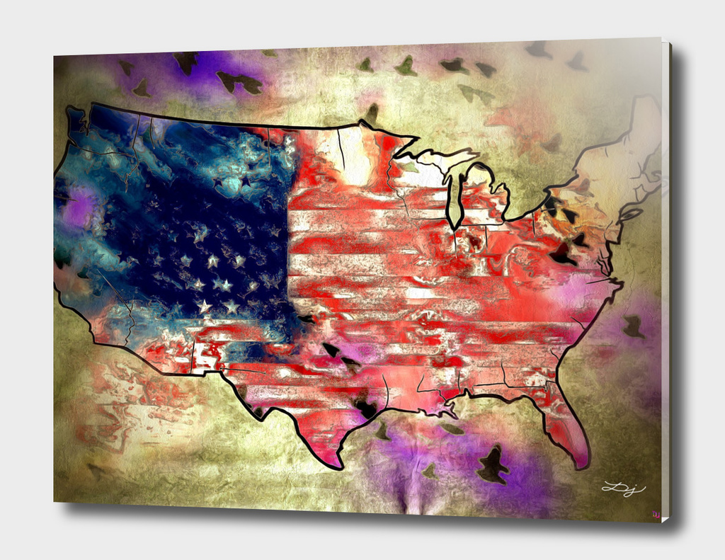 The United States Map - Flag