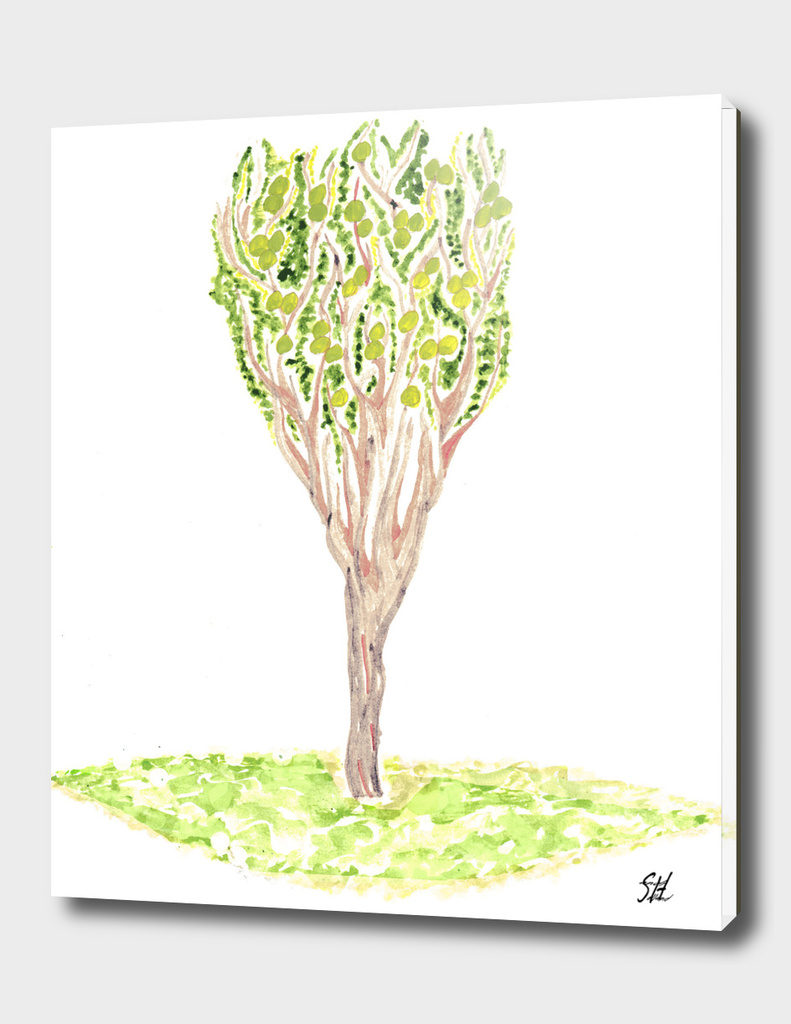Crabapple Tree Watercolor Painting