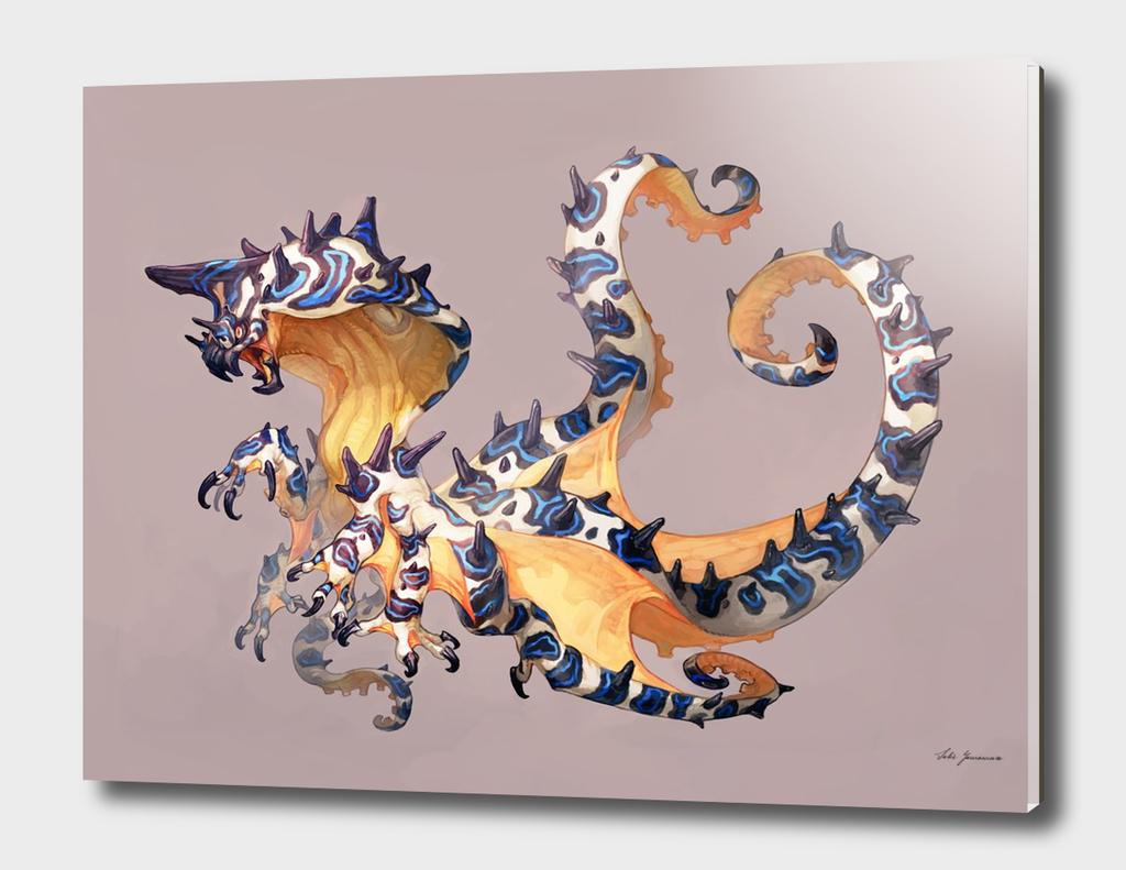 Octopus Dragon