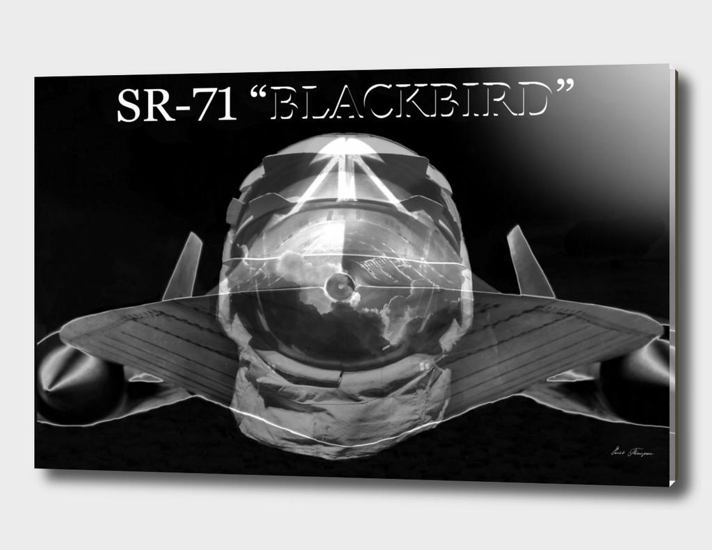 Blackbird Flyer