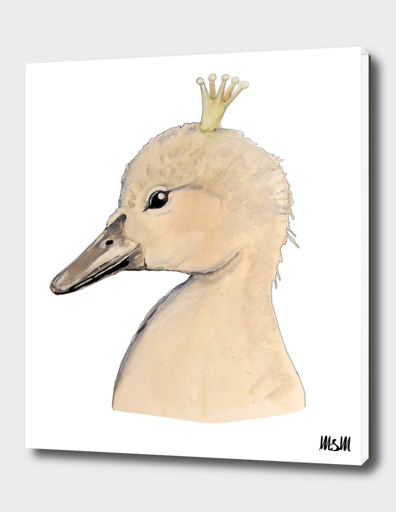 Little Swan king