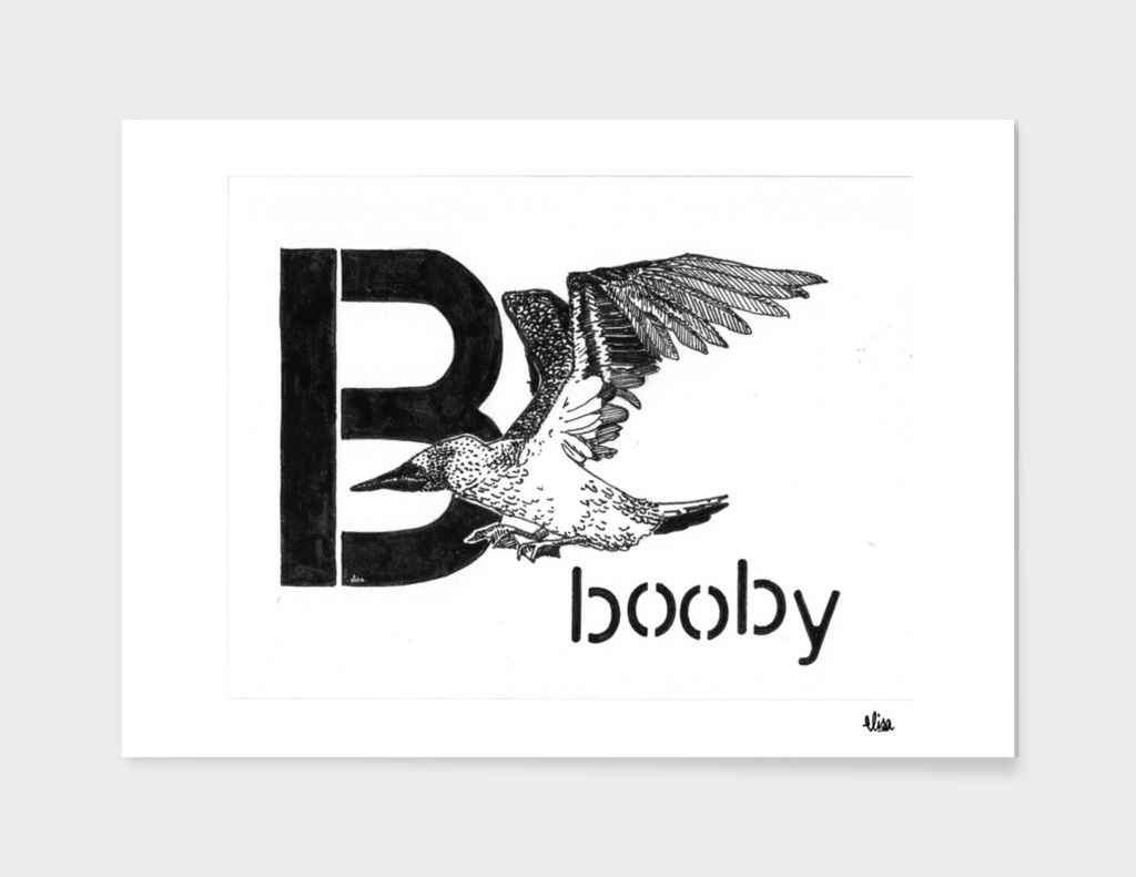 Booby