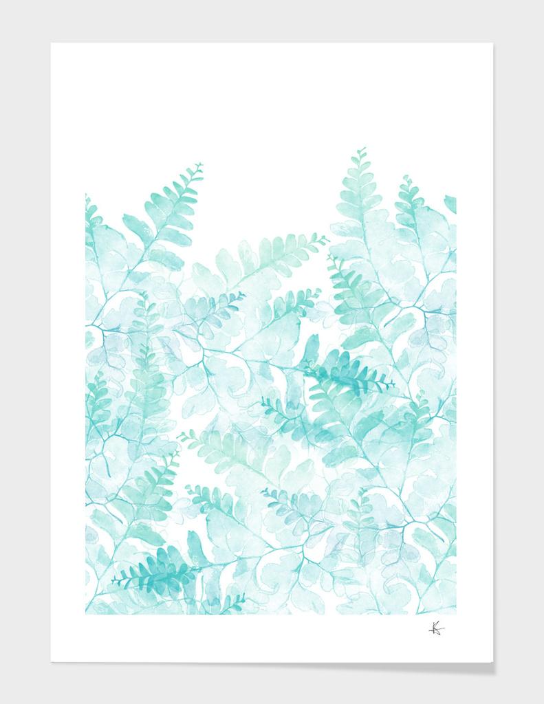 ferns rising