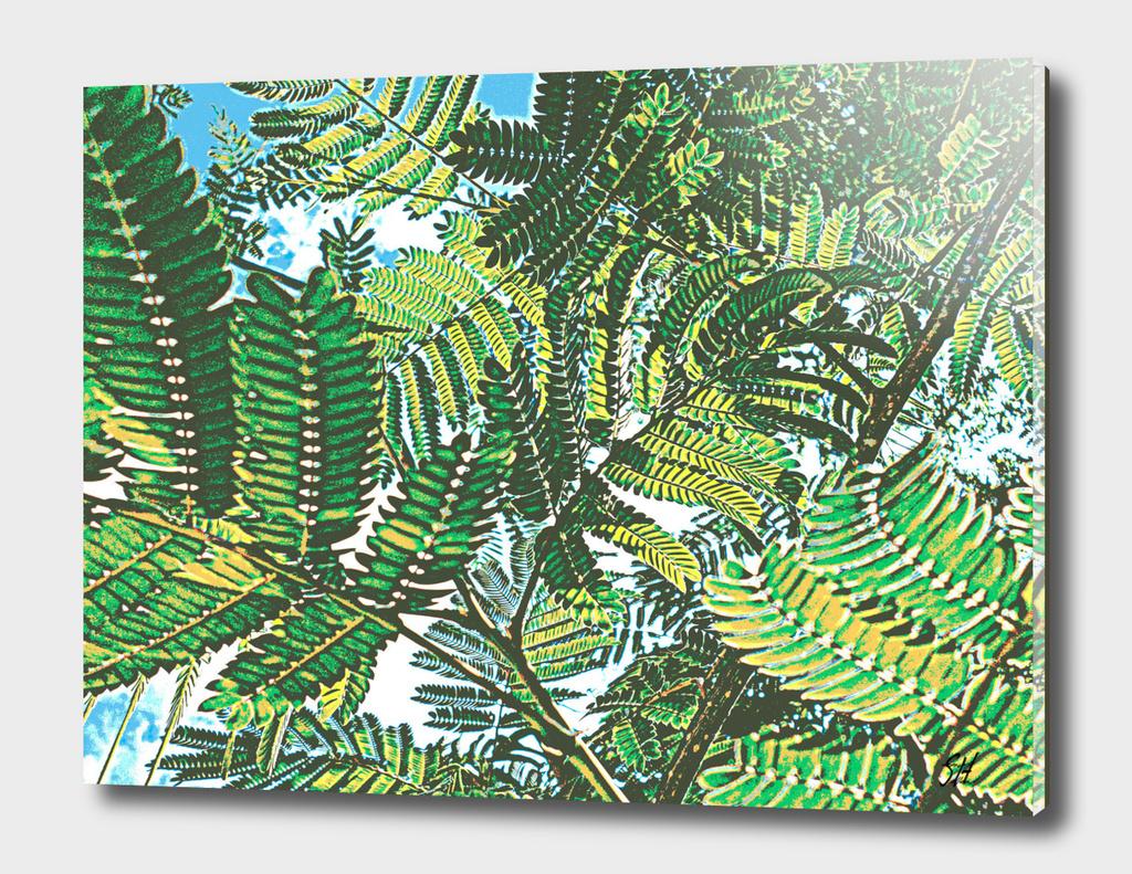 Mimosa Ferns 3 ~ Green & Gold
