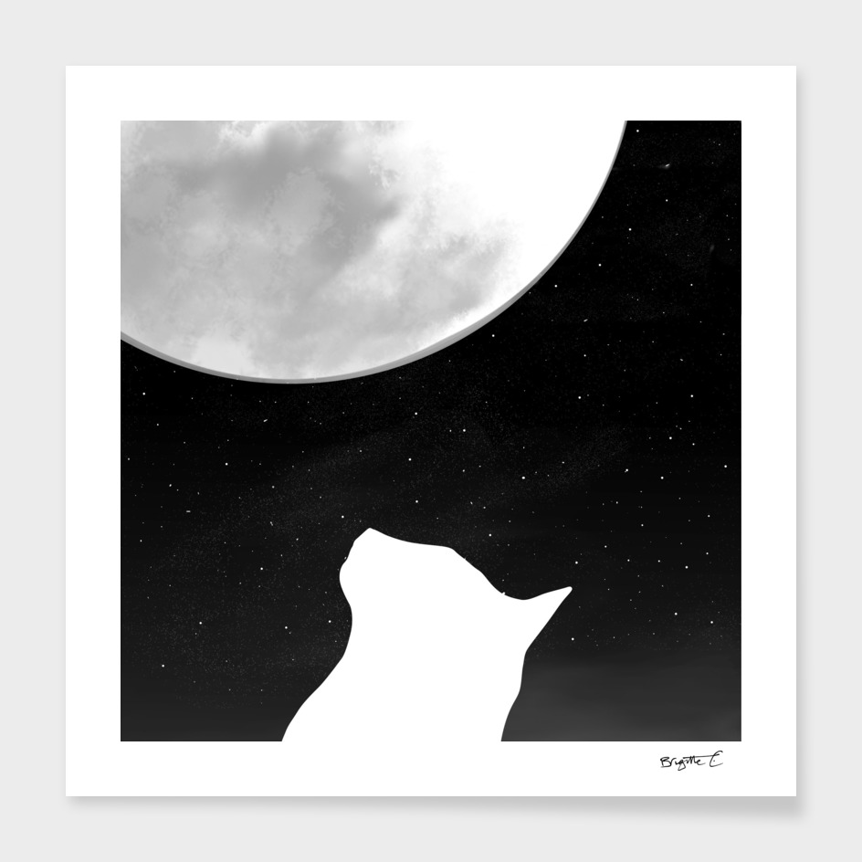 Black And White Dreaming Cat and Moon Design