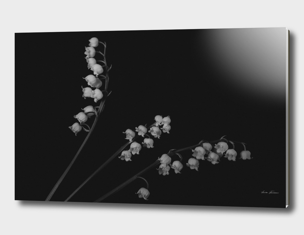 Minimal flower