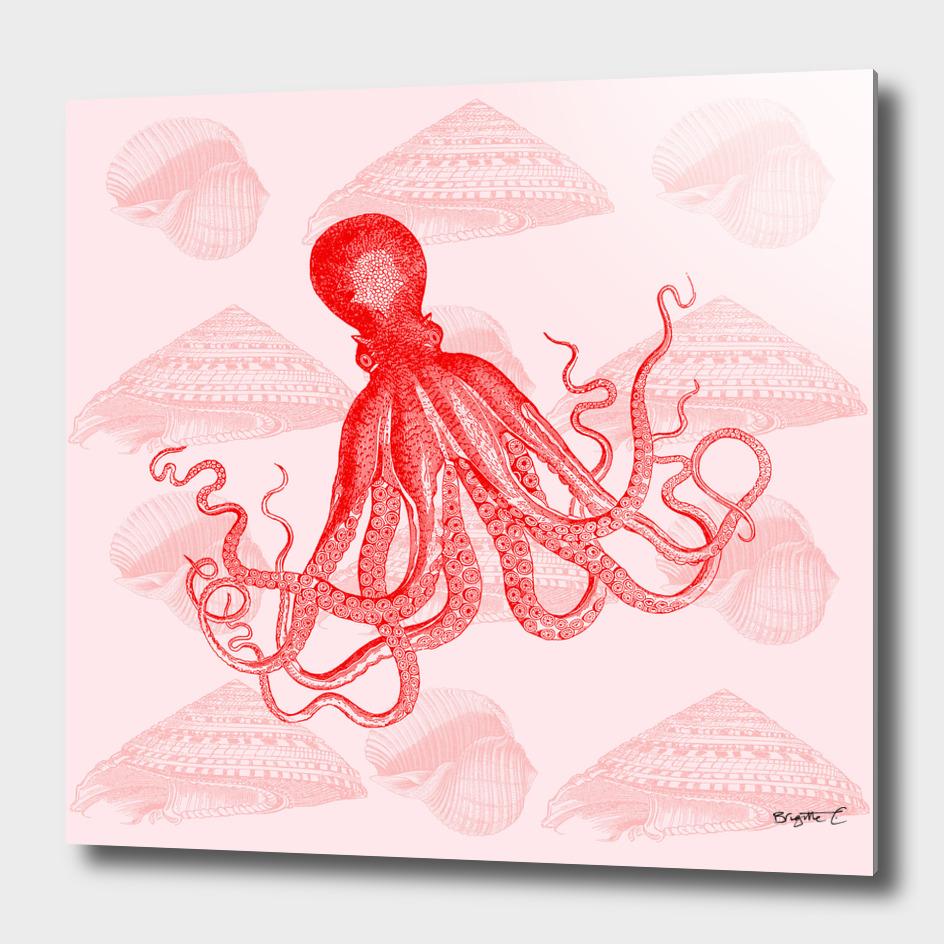 Octopus SeaShells Salmon Color Design
