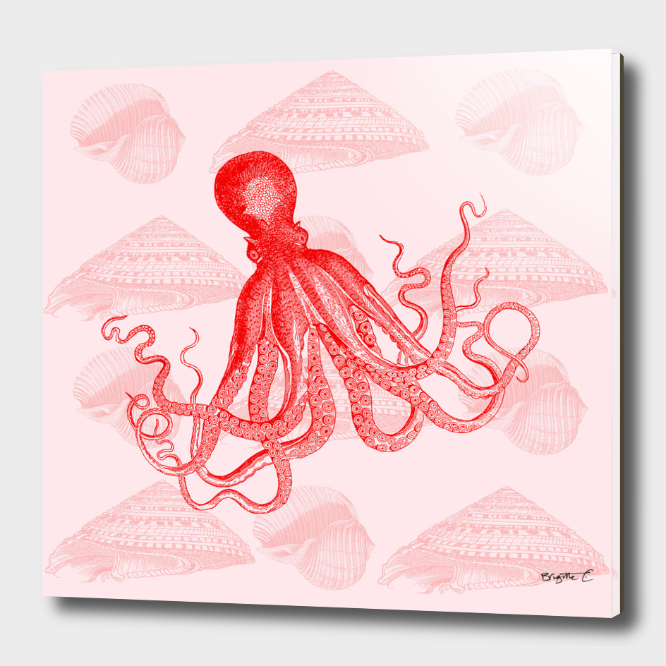 Octopus SeaShells Salmon Color Design