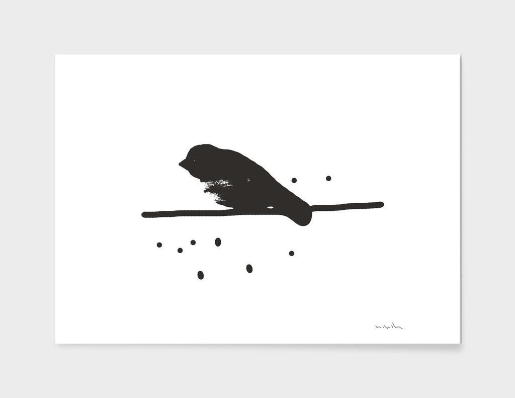 Bird #Black