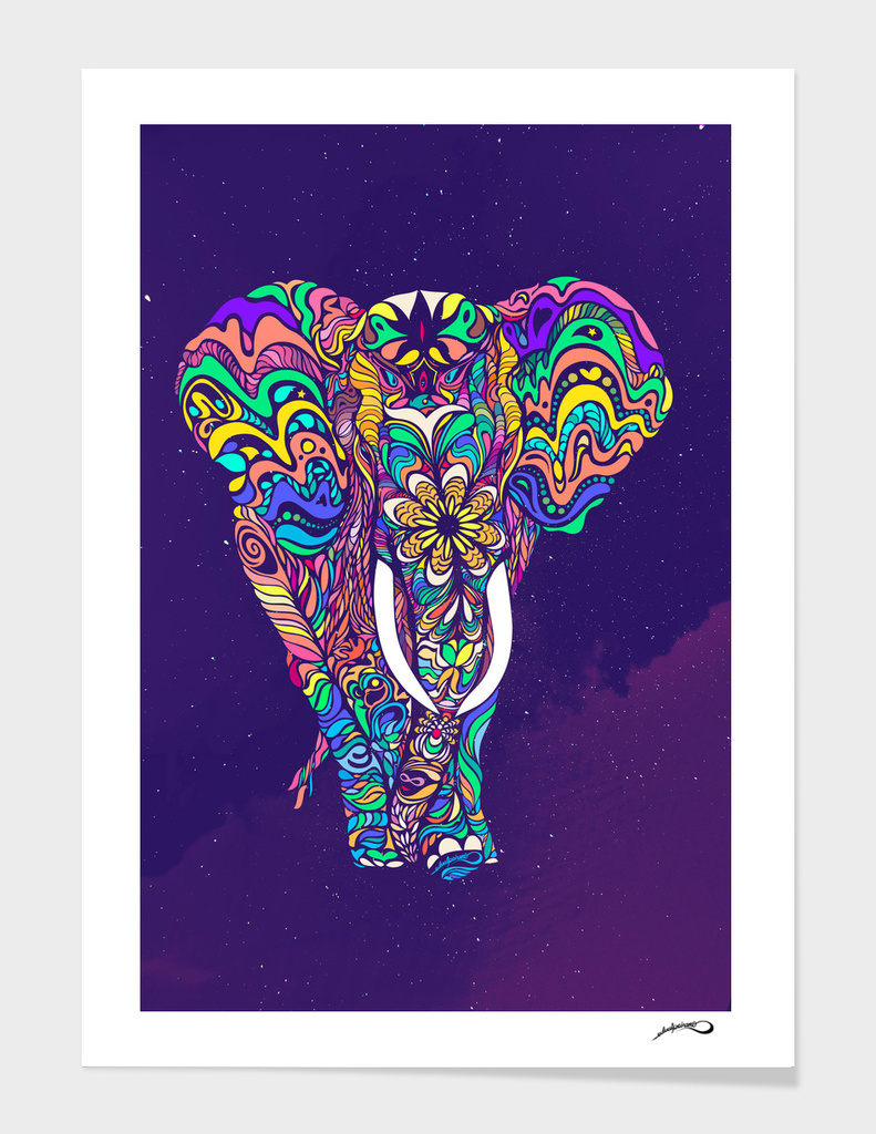 Not a circus elephant