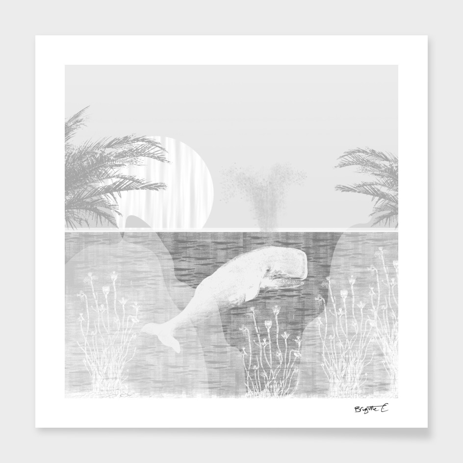 Tropical Black and White Vintage Whale Design