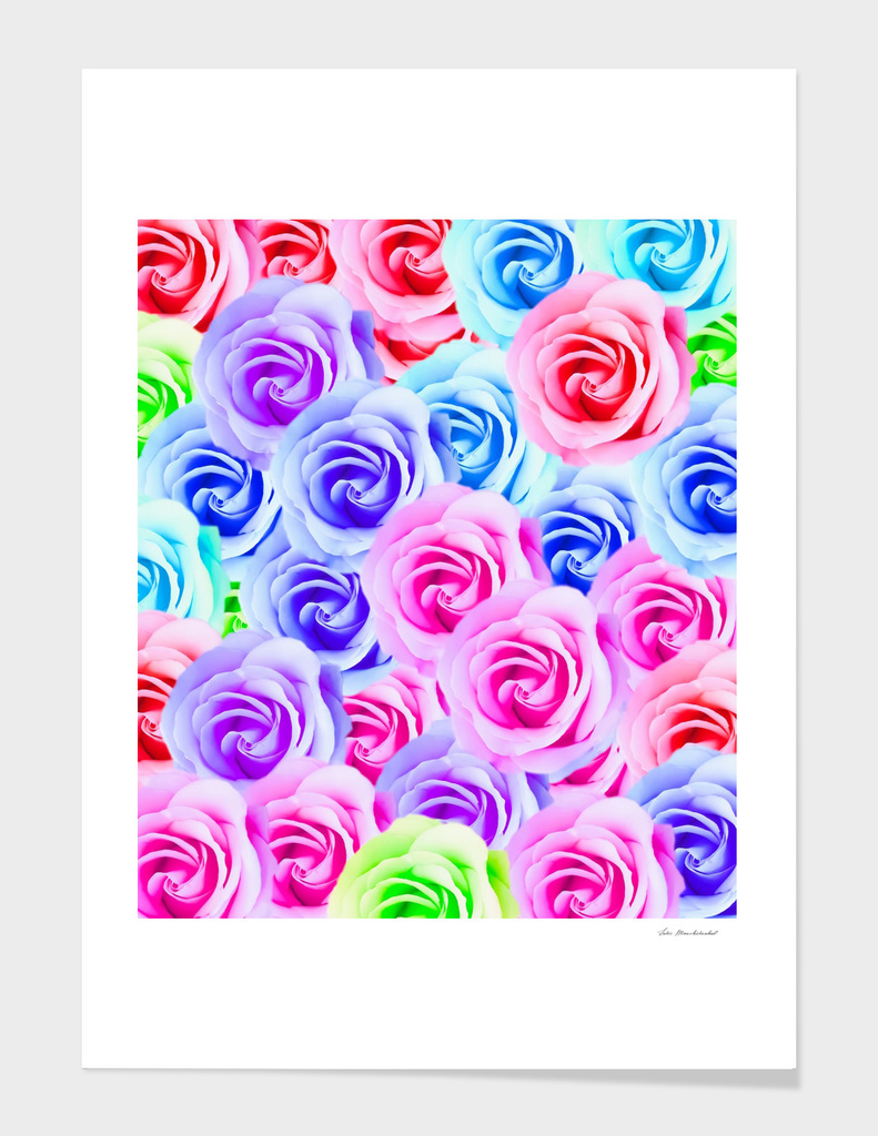 colorful rose background in pink blue purple green