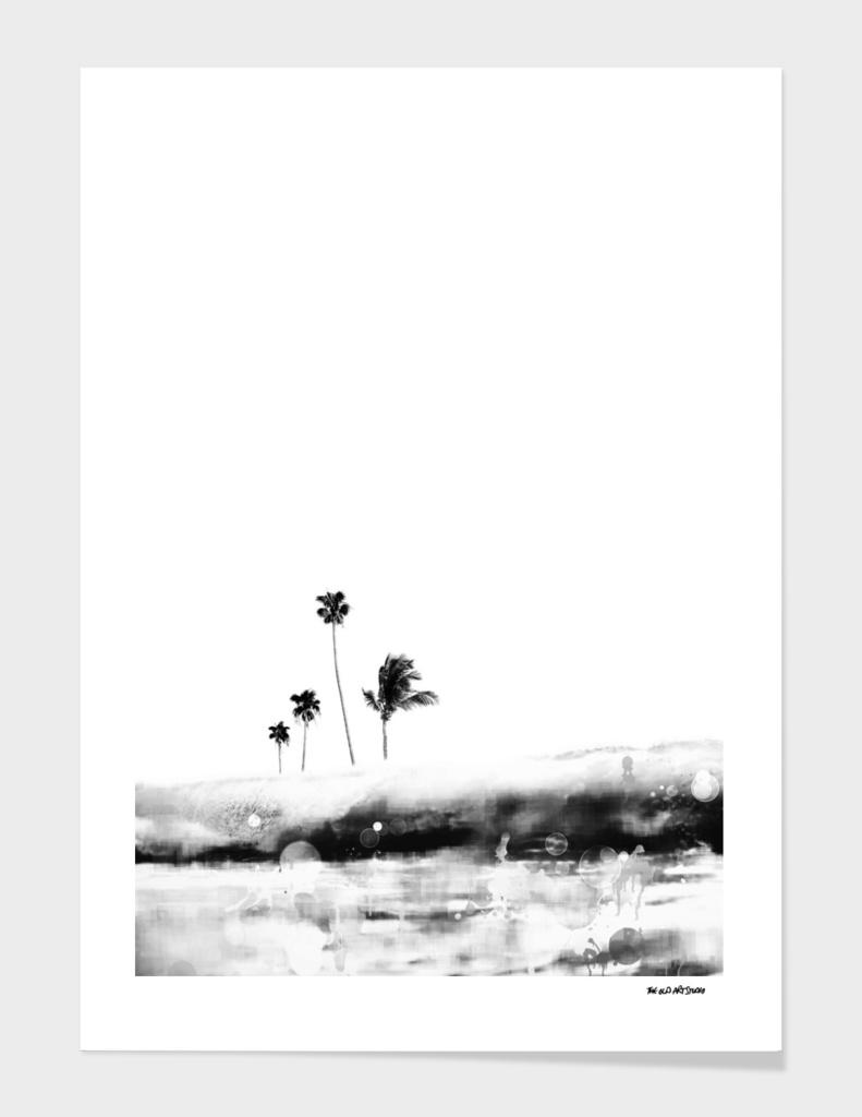 Palm 04