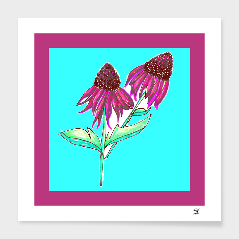 Purple Cone Flower ~ Magenta Frame