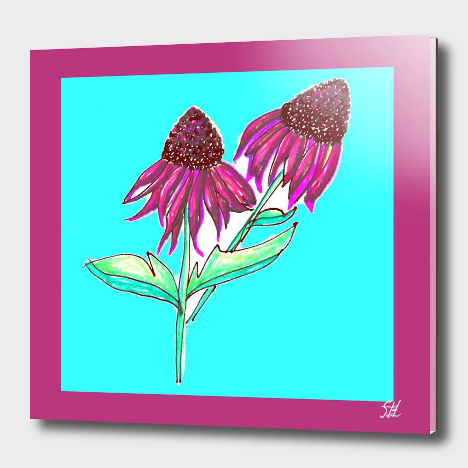 Purple Cone Flower ~ Magenta Frame